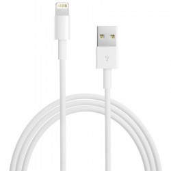 Câble Lightning - USB (2 m)